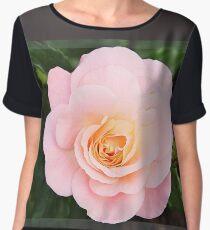 Beautiful pink rose in frame Chiffon Top