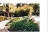 Spanish Garden by Hope  Roberts