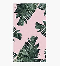 Aesthetic plants pink version  Photographic Print