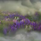Spirit Pony in a Lupine Cloud by Wayne King