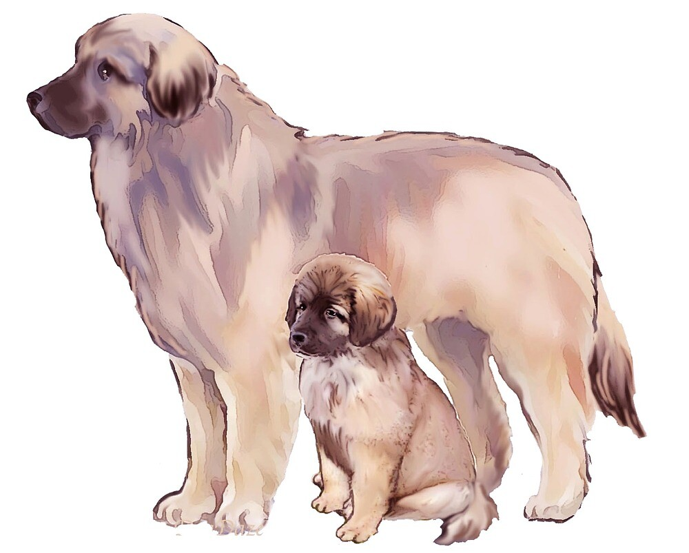 Leonberger Mother and pup by IowaArtist