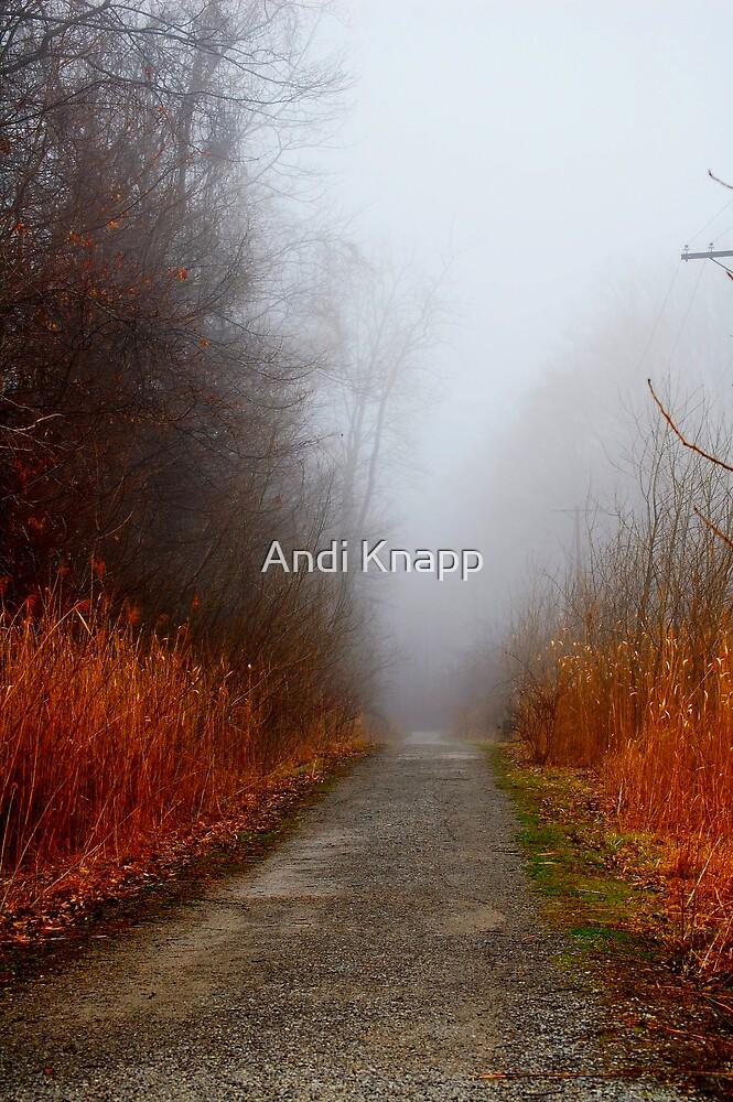 Lagoon Path by Andi Knapp