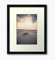 Life in the desert (Terschelling) Framed Print