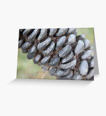 Seedpod Greeting Card