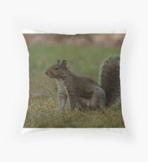 Saratoga Squirrel Throw Pillow