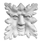 Leaf Guy 5 by facesnyc