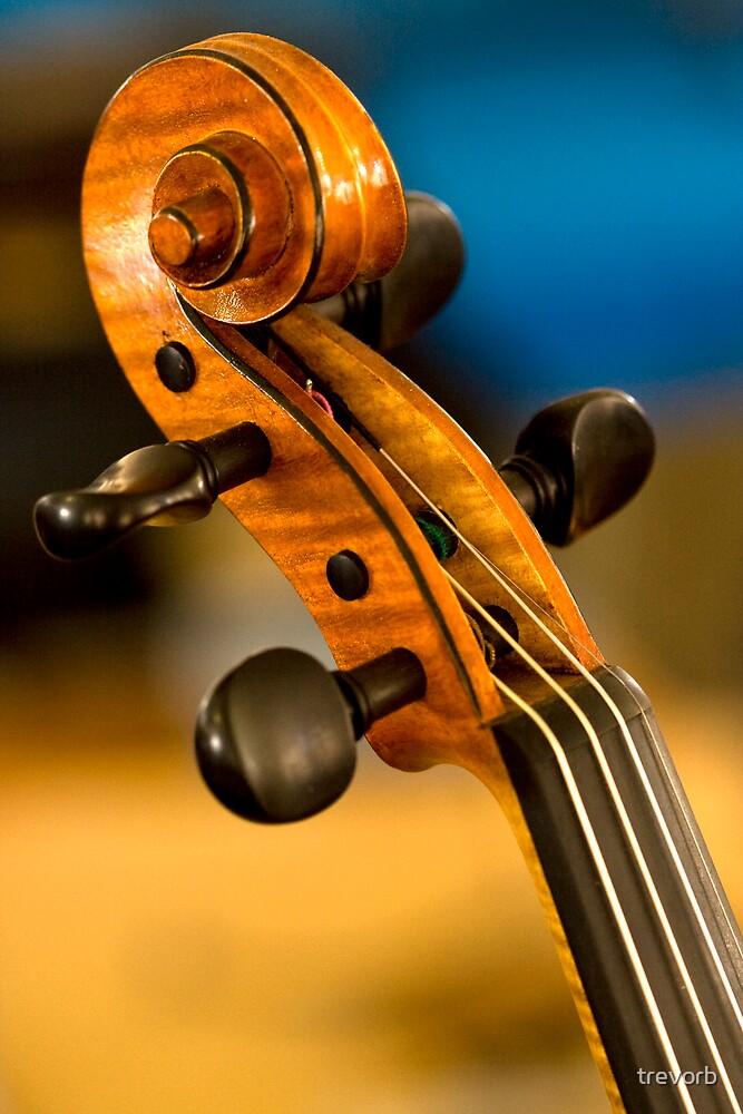 Cello by trevorb