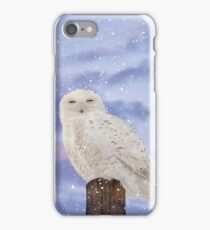 Winter solstice iPhone Case/Skin