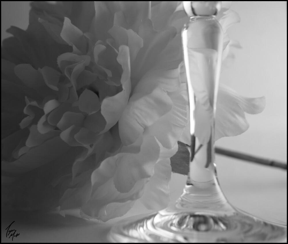 Elegant Passion by Tyson Moffitt