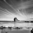Bay of Islands  by Christine Wilson