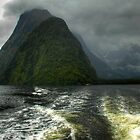 0367 Milford Sound by DavidsArt