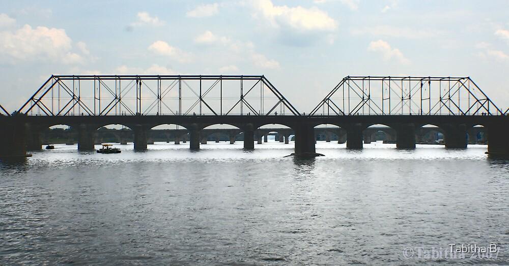 The Bridge by Tabitha Borges