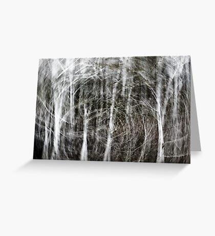 Forest Vortex... Greeting Card