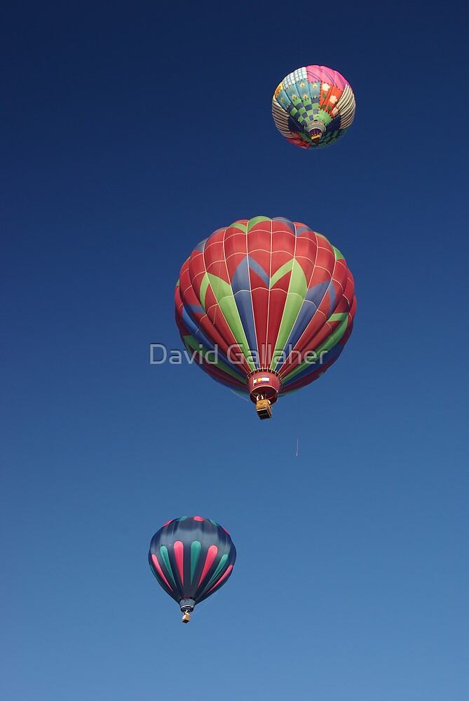 balloons  by David Gallaher