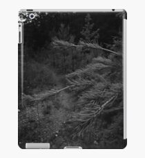 Into the Wolf's Lair ...  iPad Case/Skin