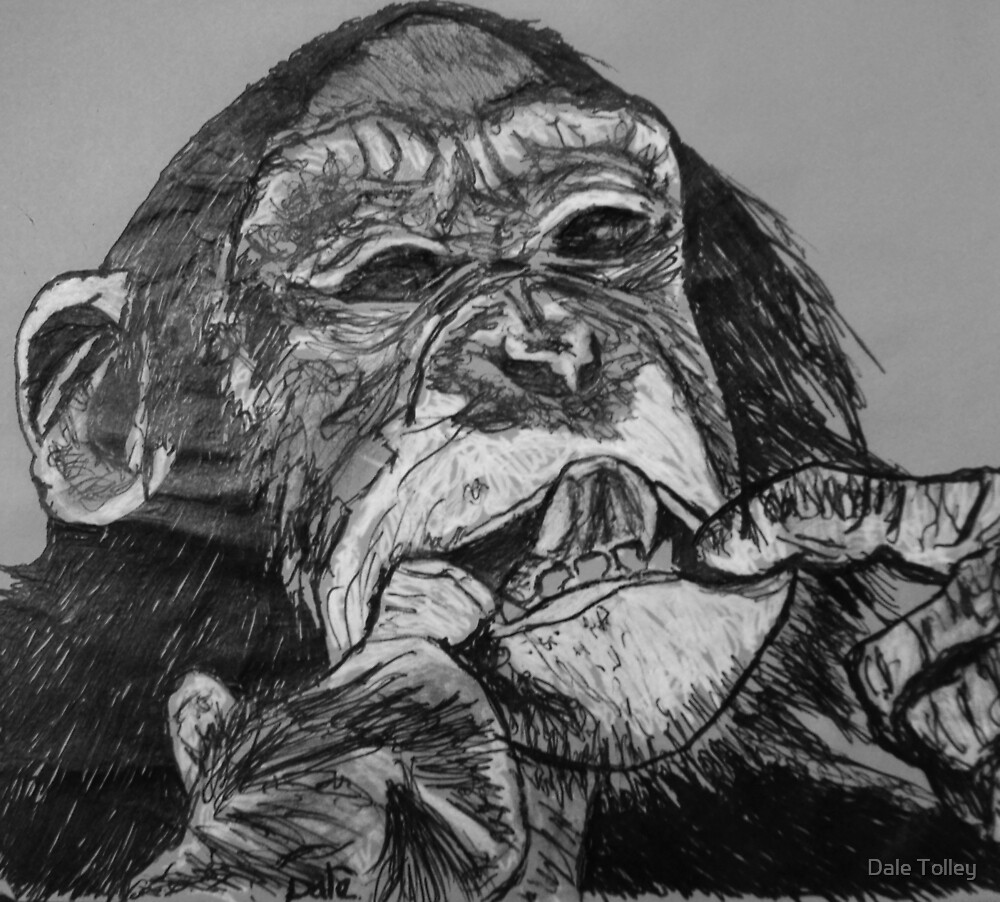 Cheeky  Monkey by Dale Tolley