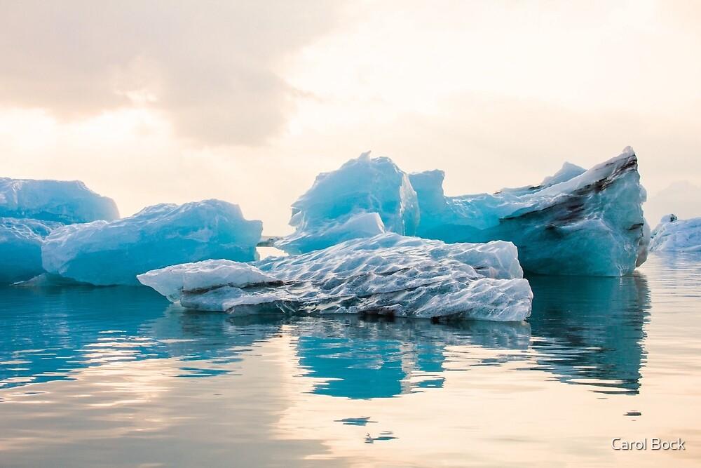 Iceberg by Carol Bock
