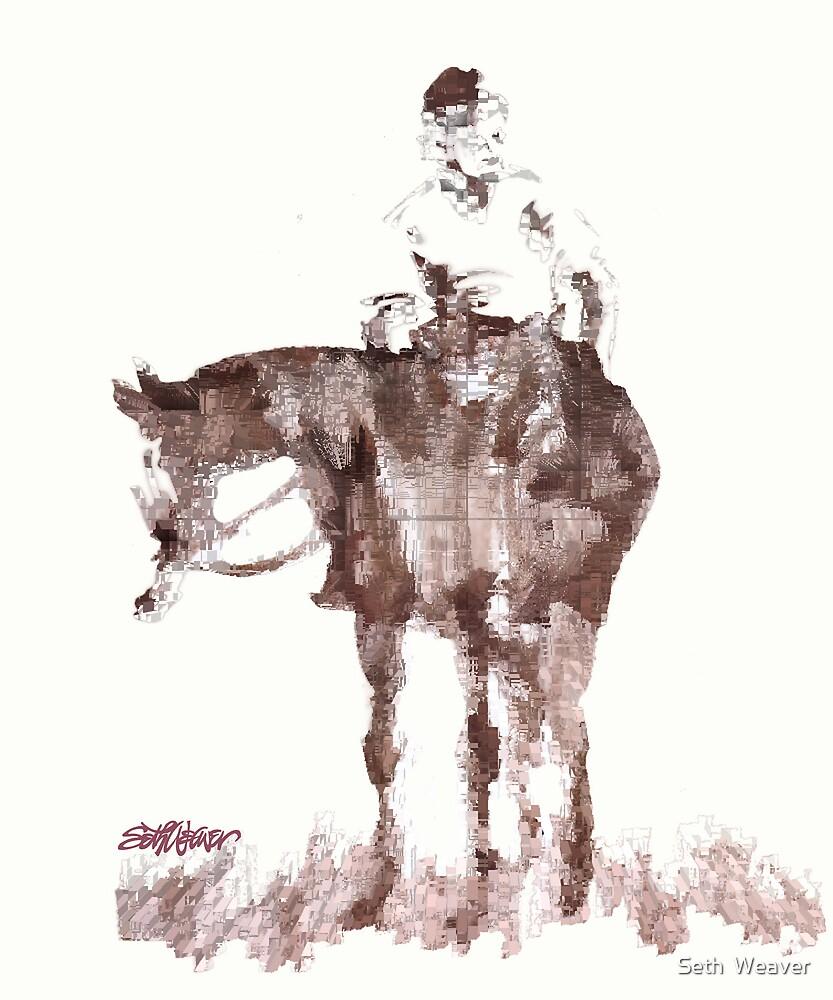 The Horseman by Seth  Weaver