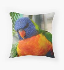Iv'e Been Framed!!! - Rainbow Lorikeet - NZ Throw Pillow