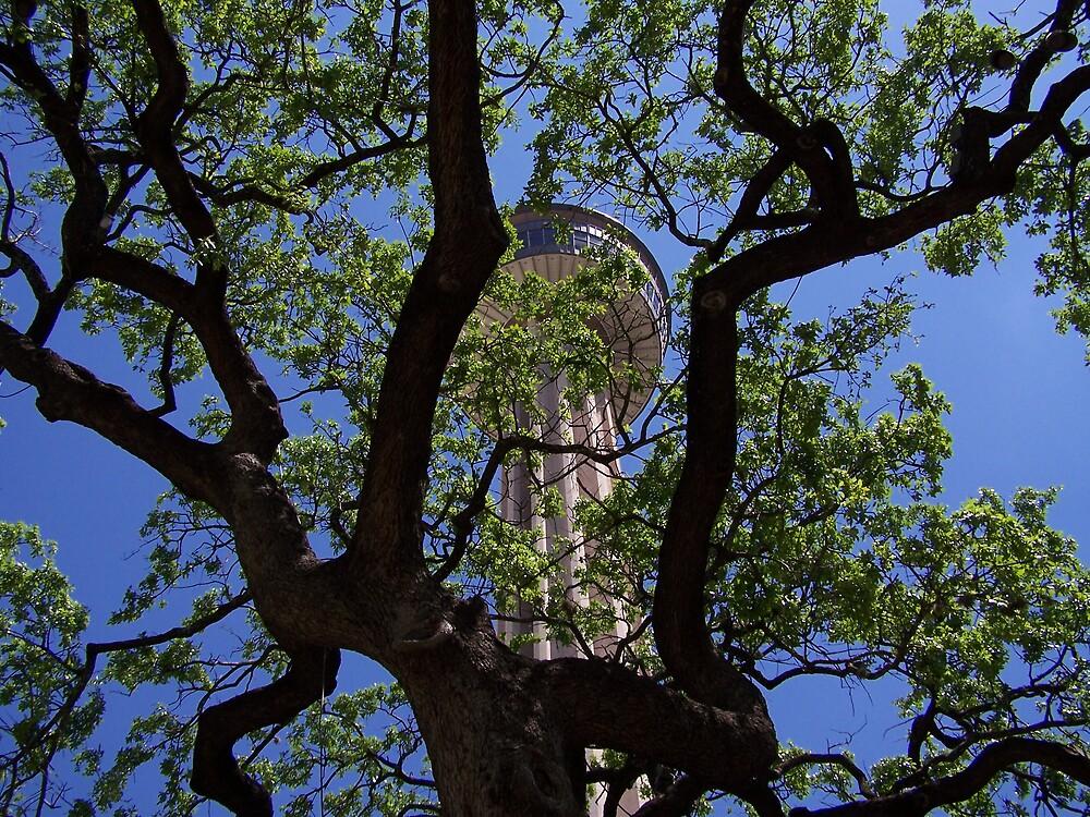 treescontest01 by VCADD
