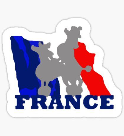 French t-shirts Sticker