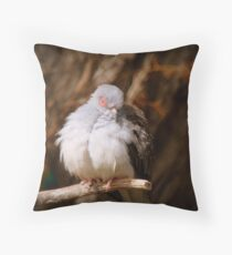 I'ts Snooze Time - Diamond Dove - NZ Throw Pillow