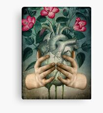 A Green Heart Canvas Print