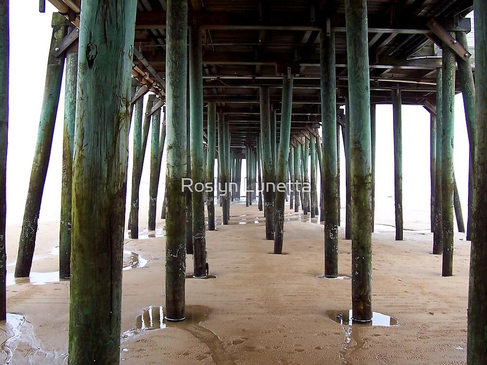 under the boardwalk by Roslyn Lunetta