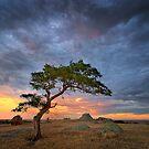 0222 Rain clouds over Dog Rocks by Hans Kawitzki