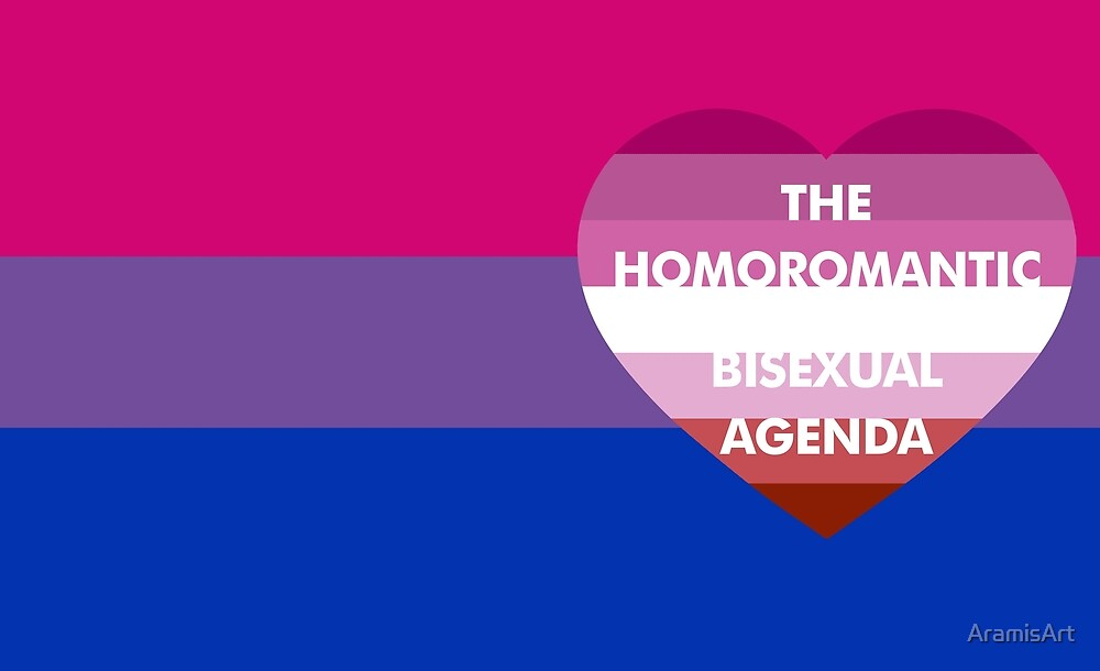 What is a homoromantic bisexual