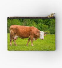 rufous cow on a meadow near the forest Studio Pouch