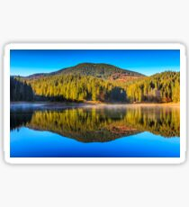 mountain lake on foggy morning in spruce forest Sticker