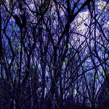 Dark Purple Forest by OneDayArt