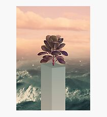 Collage Art Photographic Print