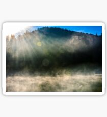 forest lake in fog at sunrise Sticker