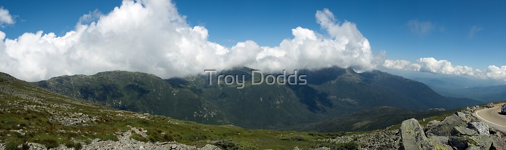 MT Washington Hare by Troy Dodds