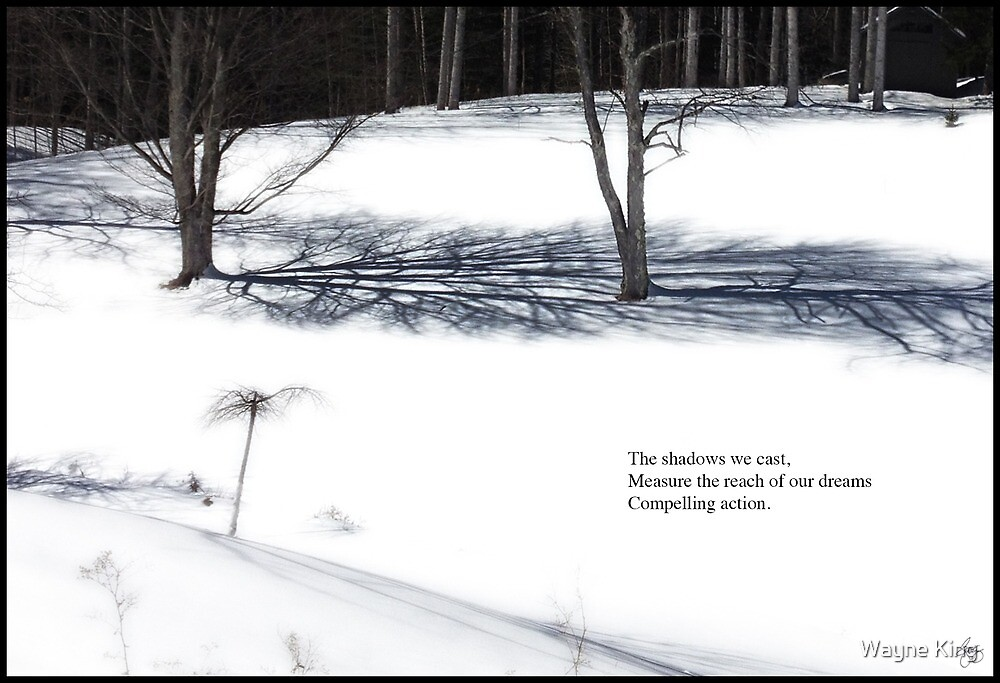 The Shadows We Cast Haiku by Wayne King