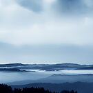 The Black Forest by Imi Koetz