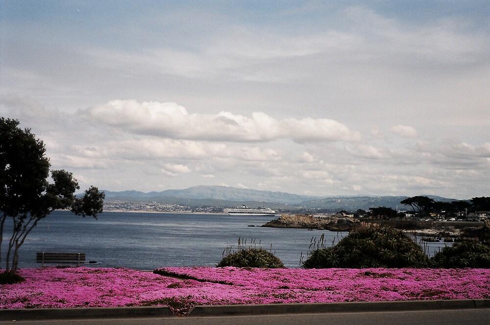 Monterey View by Jerry Stewart