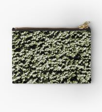 Painted Ivy Studio Pouch