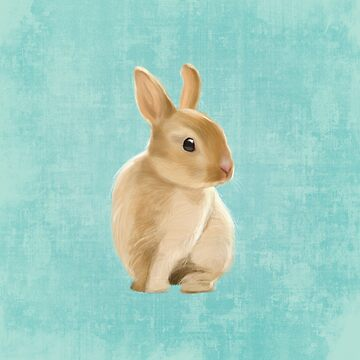 Baby Rabbit by Sparafuori