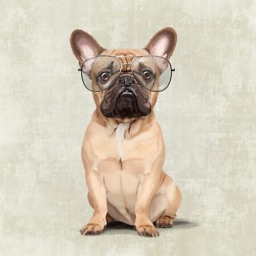 Mr Bulldog by Sparafuori