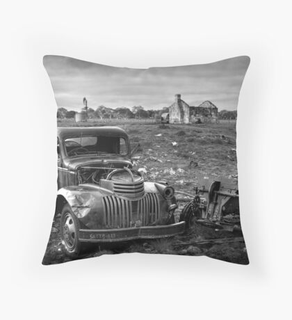 Farm Days Throw Pillow