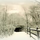 Underhill Crossing by Jessica Jenney