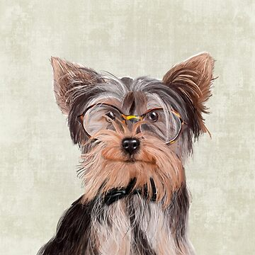 Yorkshire Terrier portrait by Sparafuori