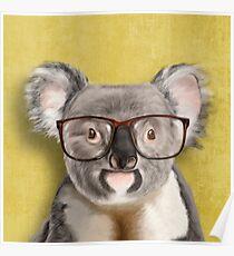 Mr Koala Poster