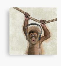 Monkey music Canvas Print