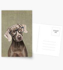 Mr Weimaraner Postcards