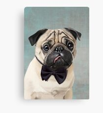Mr Pug Canvas Print