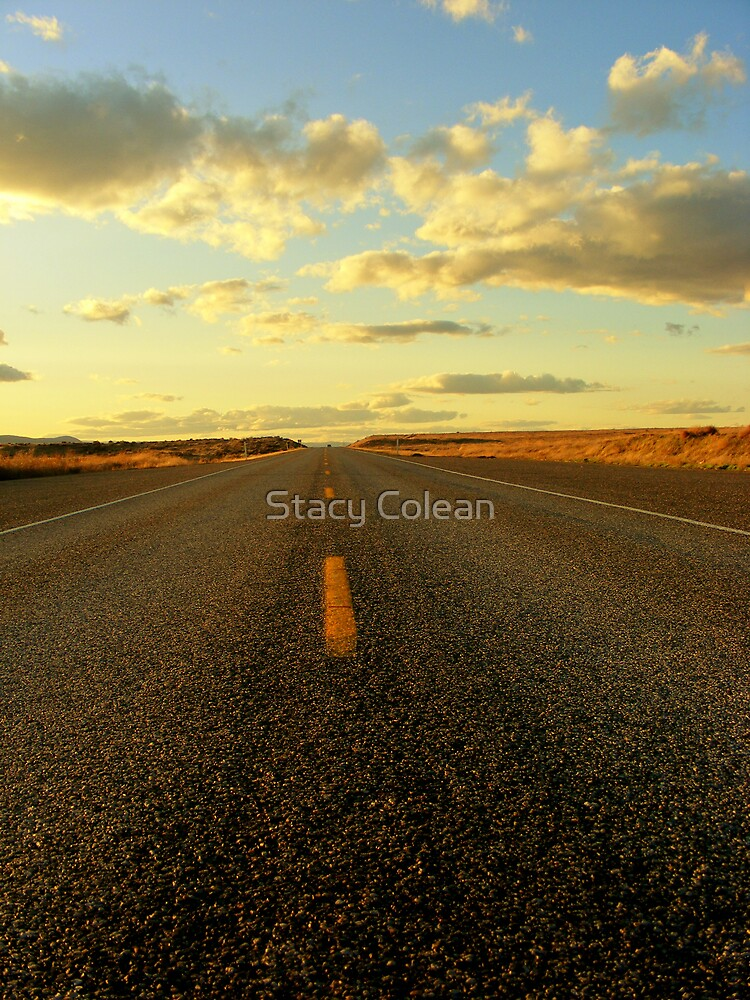On the road by Stacy Colean